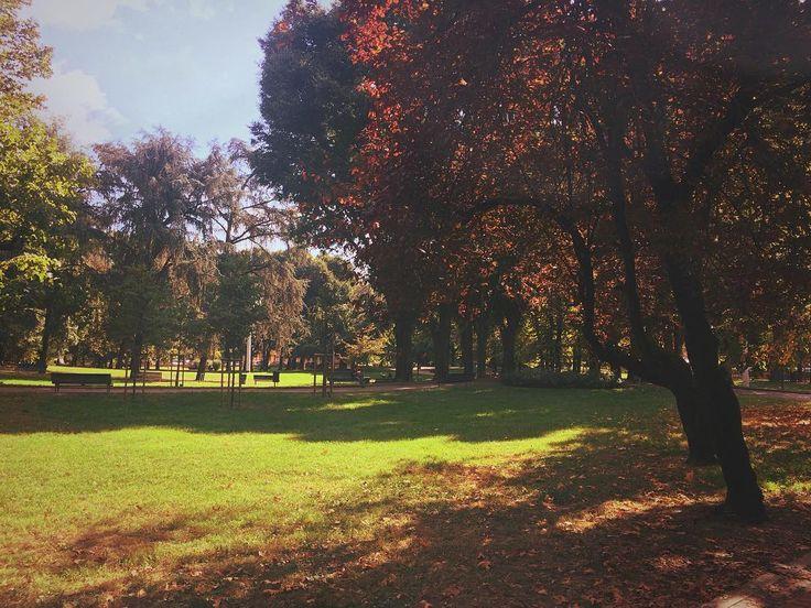 L'autunno si avvicina anche in città a #Milano Pronti a fotografarlo ?