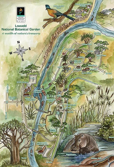 Visit the Lowveld Botanical Gardens in Nelspruit... for all the inspiration you need to start your own indigenous garden