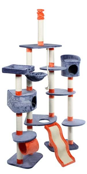 Awesome cat tree!!