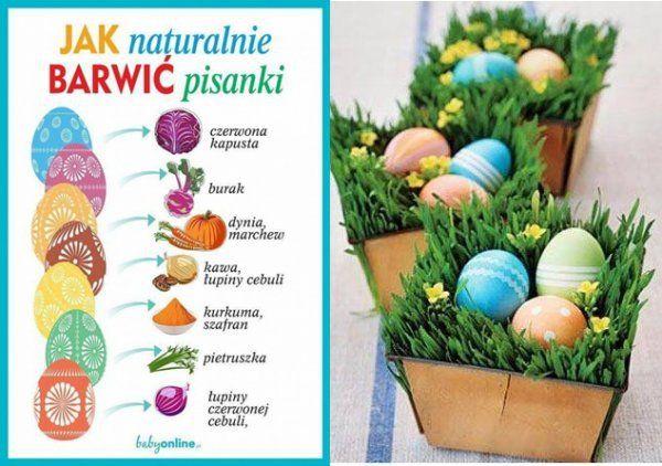 Jak naturalnie barwić pisanki, czyli jak uzyskać niebieskie, czerwone czy zielone PISANKI!