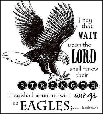 """""""But they that wait upon the Lord shall renew their strength; they shall mount up with wings as eagles; they shall run, and not be weary; and they shall walk, and not faint."""" ~Isaiah 40:31 #hope"""