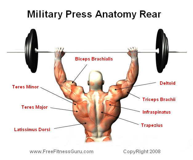 rear military press (one of my favorites) Great for building upper body strength