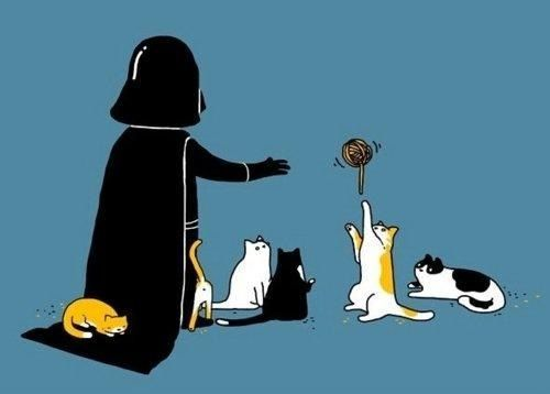Vader & CatsCat Art, Darth Vader, Kitty Cat, Favorite Things, Stars Wars, Dark Side, Crazy Cat Lady, Cat Lovers, Starwars