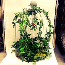 Cage à oiseau végétale - Atelier déco Zôdio Massy http://massy.zodio.fr/ete-creatif/crea/fiche/id/170