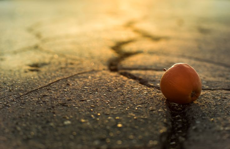 Photo Apple by MENGAart on 500px