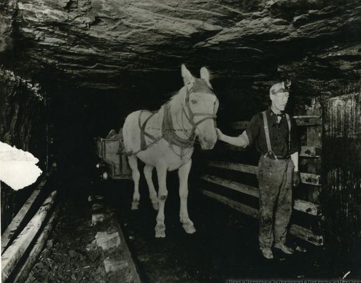 A Typical Fayette County, West Virginia coal mine circa 1900