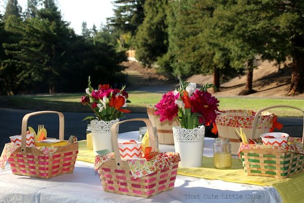 {One week to�Design a Girls Night Picnic} Picnic Time !