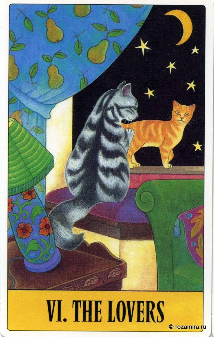 20 Best Cats In Tarot: Tarot For Cats Images On Pinterest