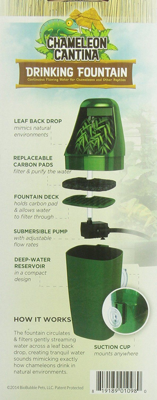 AmazonSmile: BioBubble Reptile Drinking Fountain, Green: Pet Supplies