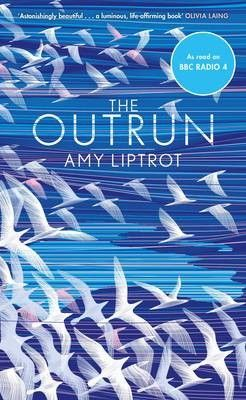 The Outrun by Amy Liptrot review – the badlands of addiction | Books | The Guardian