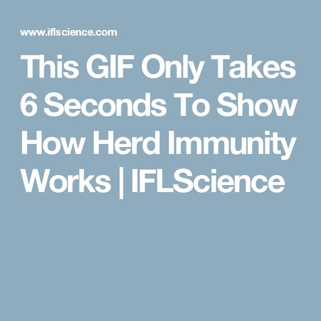 This GIF Only Takes 6 Seconds To Show How Herd Immunity Works | IFLScience
