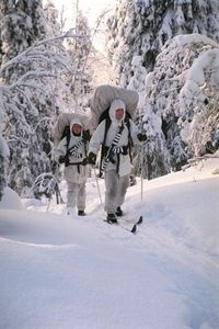 Finnish soldiers on skis during the military service