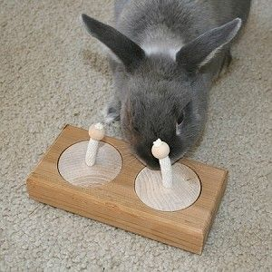 DIY Rabbit Toy Ideas - Bunny Approved - House Rabbit Toys ...