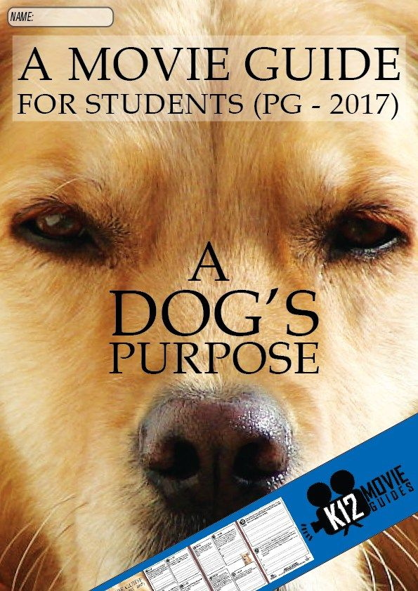 A Dog's Purpose Movie Guide - Based on the 2010 novel by W. Bruce Cameron, this movie shows life from an entertaining dog's point of view. Help create a genuine learning opportunity for your students by using this movie guide. Encourage students to develop their sympathy as they answer questions designed to make them think about life from the perspectives of the characters in this movie.