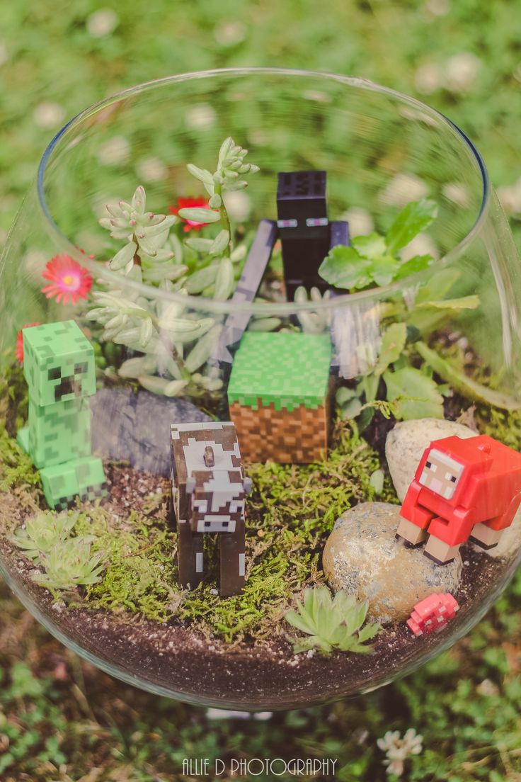 My terrarium I finally made! Minecraft terrarium!
