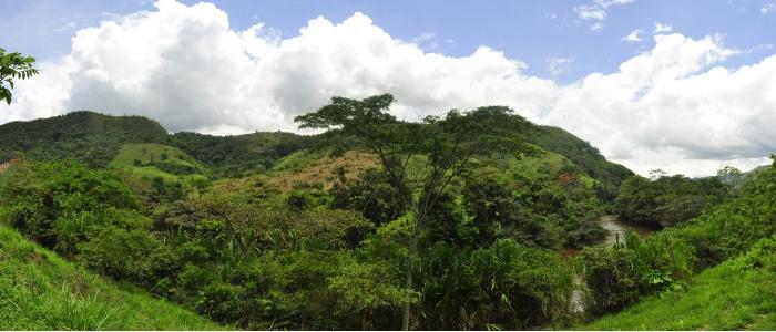 El Santuario de Fauna y Flora Guanenta Alto río Fonce se encuentra ubicado en la Cordillera Oriental en la Región Andina de los Andes en Colombia. Su superficie hace parte de los departamentos de Boyacá y Santander. Se ubica en las cercanías de los municipios de Encino, Charalá, Gámbita, Duitama y Sogamoso.
