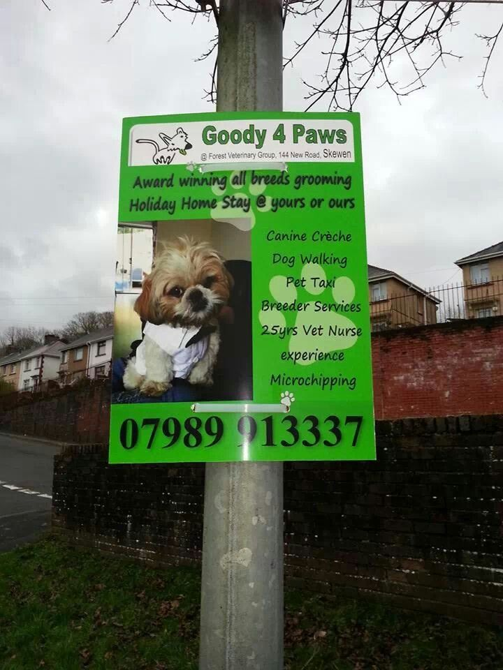 Goody for paws