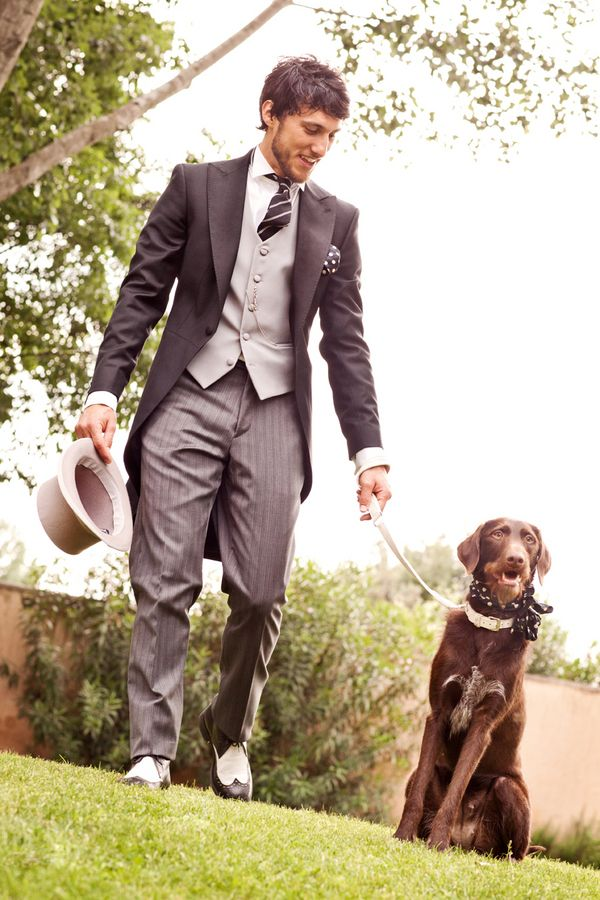 Traditional #Suit and Tails for the #Groom with a Dapper Dog! |