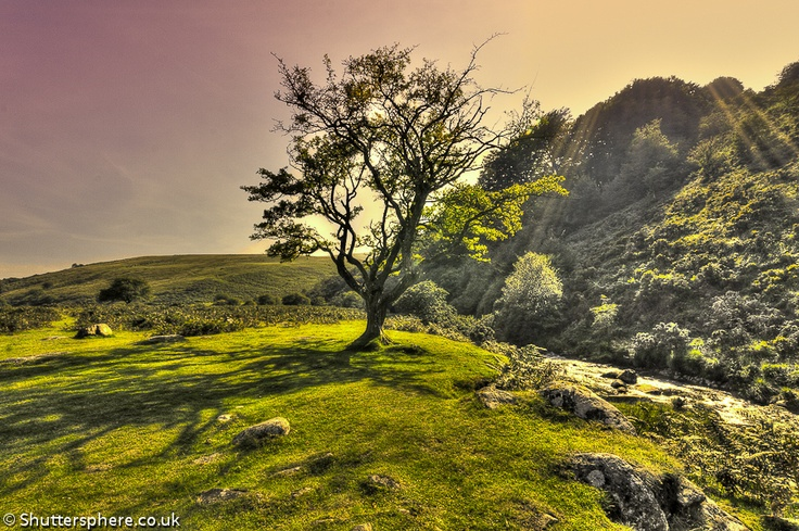 Moors, Devonshire, England. I've been dying to explore the wild, rugged beauty of the windswept moors of England.