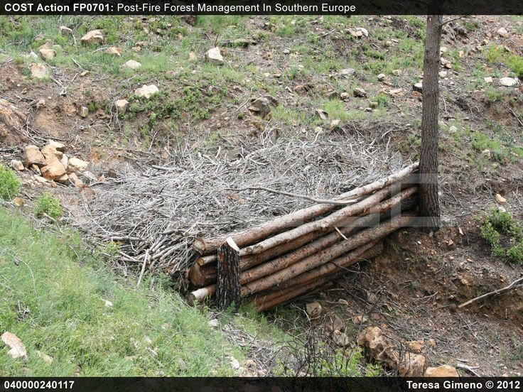 Cost Action Fp0701 Log Erosion Barriers And Soil
