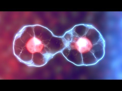 Learn how to create a cool dividing cell effect in this After Effects tutorial. This tutorial uses native plugin's and effects so if you have After Effects i...