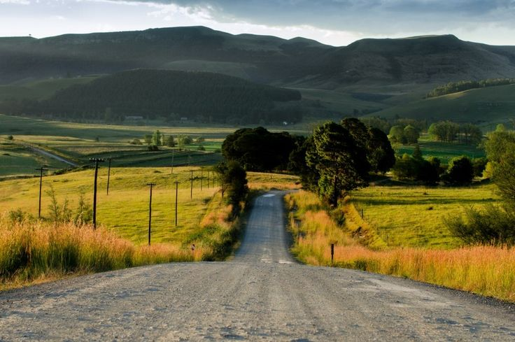 Dusty road near #Nottingham Road, #MidlandsMeander by Fred Swart #Photography http://www.n3gateway.com/news5/17/151/Fred-Swart-Lens-of-Africa-Photography/d,detail.htm