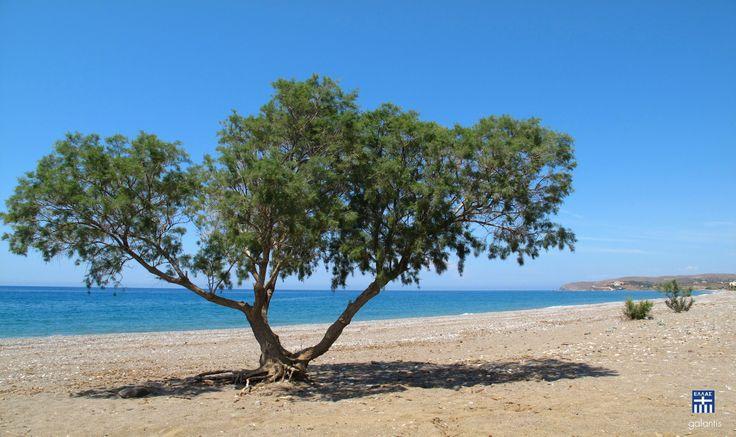 Managros beach.Chios island