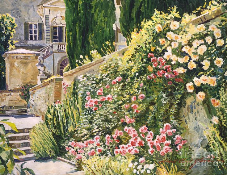Tuscany Impressions David Lloyd Glover