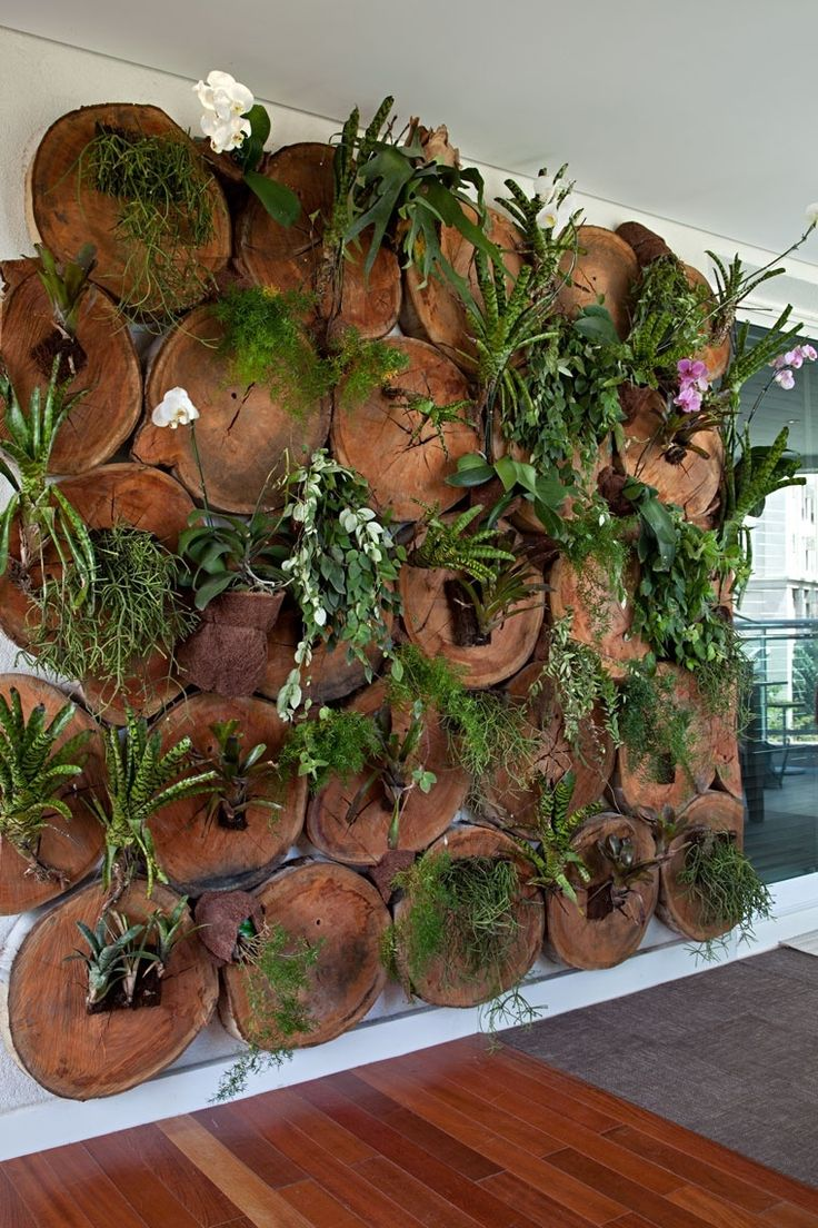 bromeliad and air plants growing vertical in circular log planters on wall