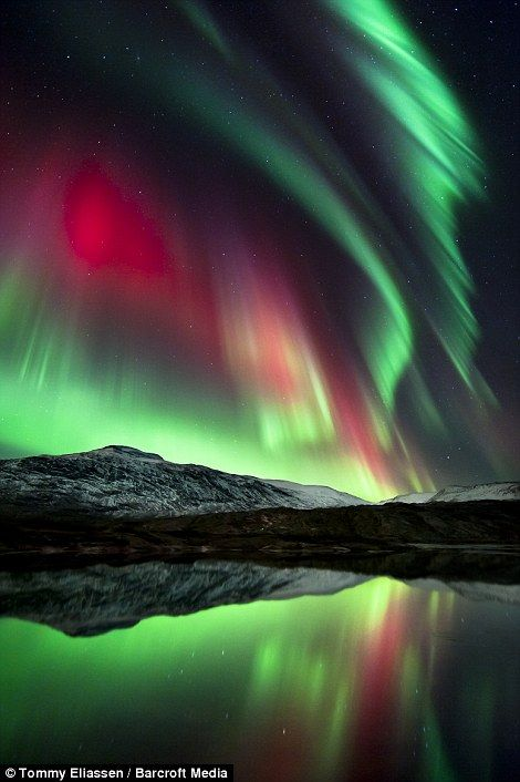 The spectacular Northern Lights turn the sky green and red at Mo i Rana in Nordland