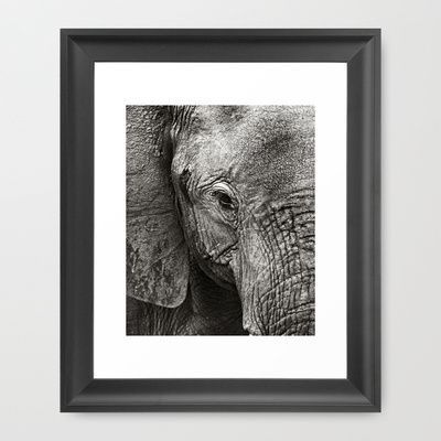 Elephant Skin Art Print by LinnB