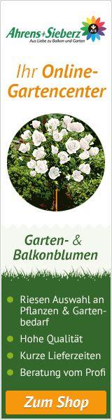 as-garten.de - Ihr Online Gartencenter