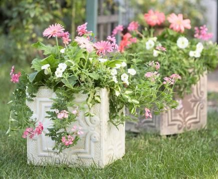 Update the relaxed, cheerful look of a vintage container with rambling plants in a pretty pink, ivory and green palette.