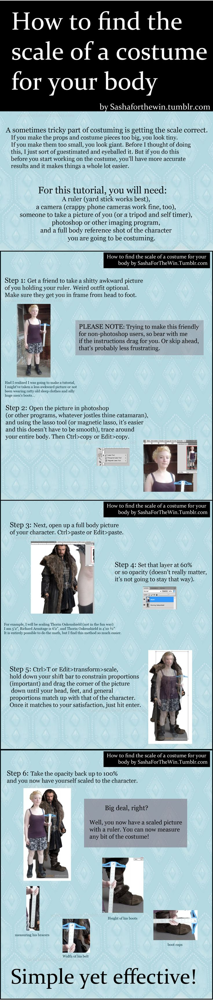 """""""How to find the scale of a costume for your body."""" This is humorous, but it's also a good idea."""