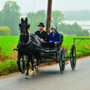 9 reasons to visit Mennonite country in Ontario