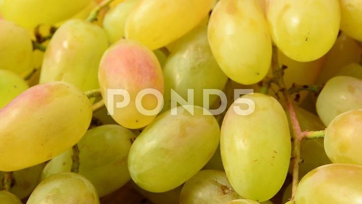 Grapes on a kitchen board.   #grape #top #view #green #bowl #wooden #closeup #isolated #heap #vegetarian #meal #ripe #nobody #natural #berry #vegan #agriculture #dessert #winery #white #sweet #diet #snack #organic #vine #studio #pile #serving #gourmet #wine #healthy #ceramic #vitamin #group #cluster #juice #ingredient #fruit #background #fresh #board #nutrition #nature #single #harvest #food #juicy #raw #summer #autumn