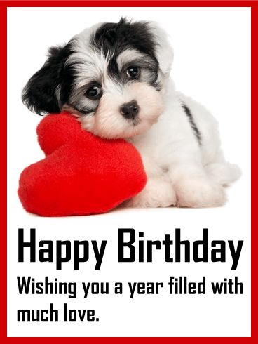 Loving Puppy Birthday Card: Cuteness alert! A puppy on a pillow with a special birthday message? Yeah, it doesn't get much cuter than this! Wish someone a year filled with love when you send this sweet puppy birthday card. Look at those eyes! They are too adorable to resist. If you need a card for an animal lover, this is the one for you! They will love getting a birthday greeting from this cuddly pup.