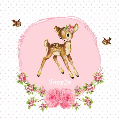 http://www.geboortekaartje.info/wp-content/uploads/vintage-geboortekaarje-hertje-veerle.jpg