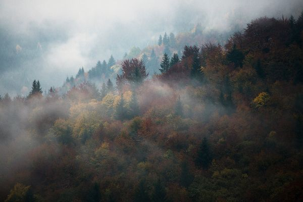 Transylvania by Mathieu Le Lay / 4