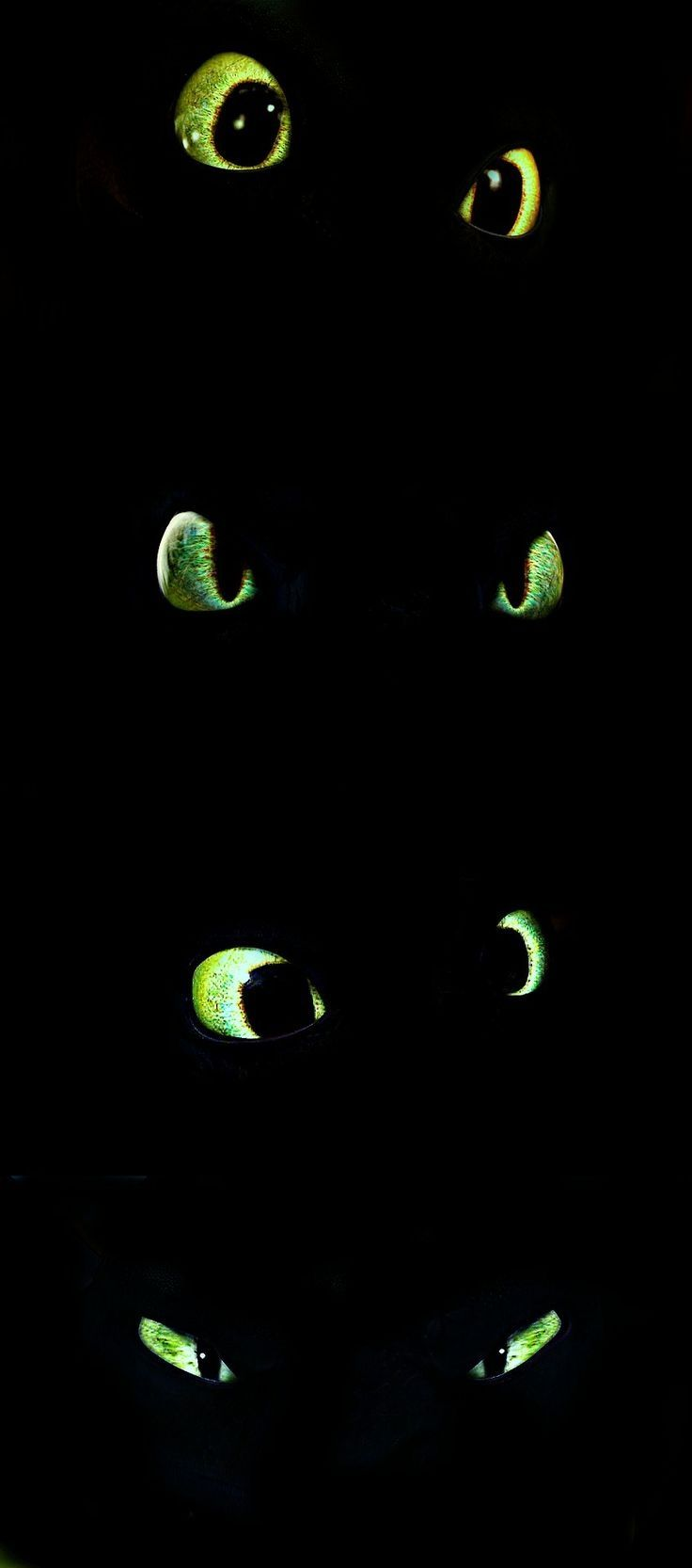 The many eyes of toothless