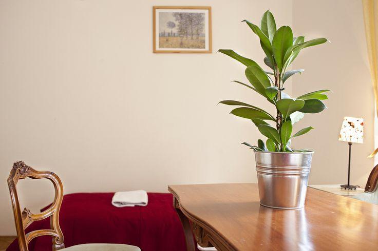 www.littletownhotel.cz