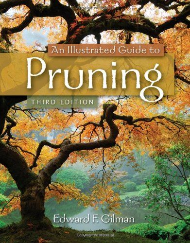 An Illustrated Guide to Pruning by Edward F. Gilman http://www.amazon.com/dp/111130730X/ref=cm_sw_r_pi_dp_liQCwb193HDSN