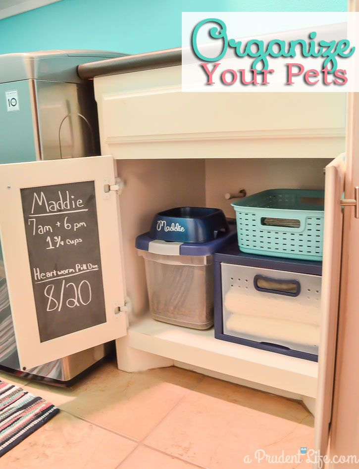 Great tips for making a pet station - love the chalkboard message board inside the cabinet!