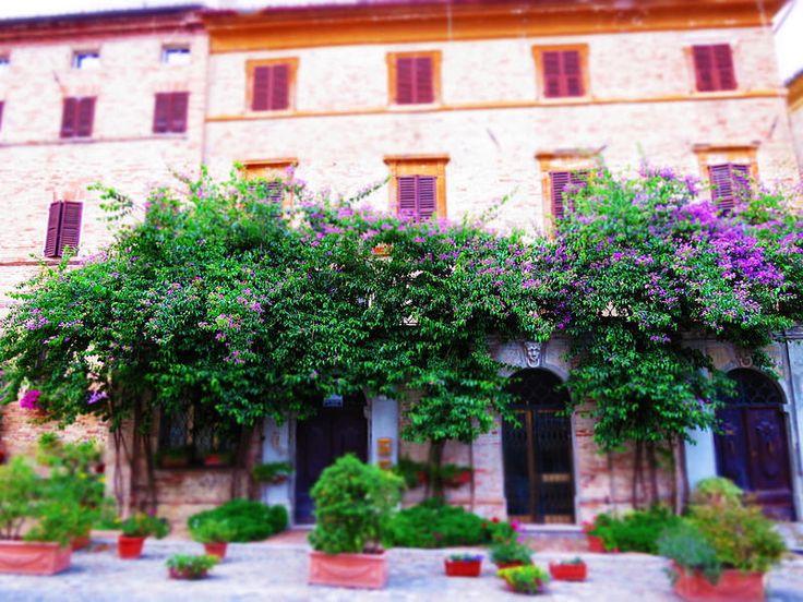 Marche, Italy, Corinaldo