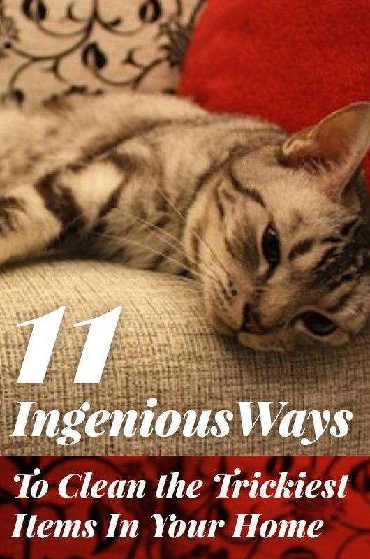 11 Ingenious Ways To Clean the Trickiest Items In Your Home  | Whether your home is crying out for a deep clean or it's in need of a quick refresh, the inevitable chore that is cleaning is unavoidable. But fear not, help is at hand.