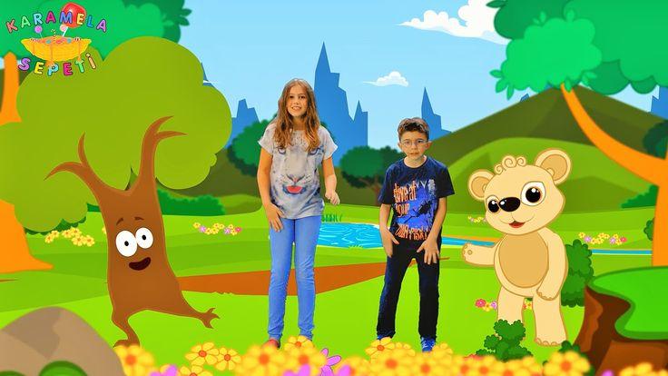AYI Çocuk Şarkısı - Karamela Sepeti Çocuk Şarkıları