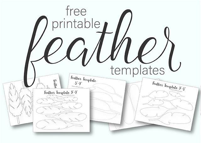 graphic regarding Free Printable Turkey Feather Template named Printable Turkey Feather Behaviors Templates - Absolutely free Pre-k