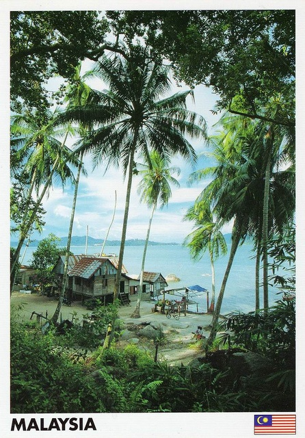 seremban asian singles Meet thousands of beautiful single women online seeking men for dating, love, marriage in malaysia.