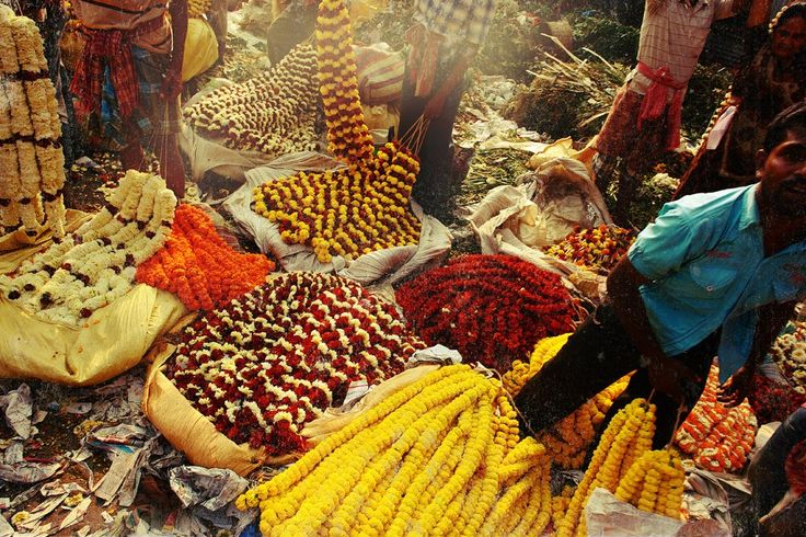 За что я люблю Калькутту: мать Тереза, золотое дерево и рикши прямоходячие