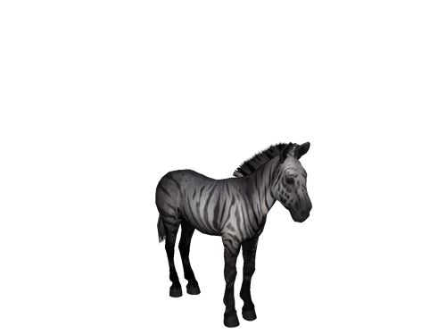 [Horse Game: ♥Posion Rain♥ the level 65 Rainbow Zebra Stallion]
